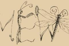 kim_bugs